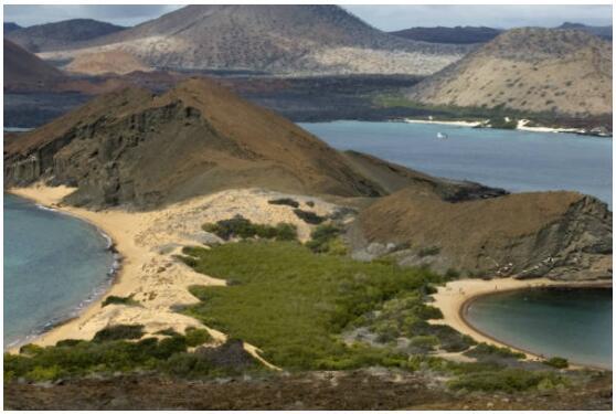 Travel to Ecuador and the Galapagos