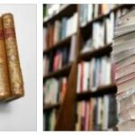 France Literature - 20th Century