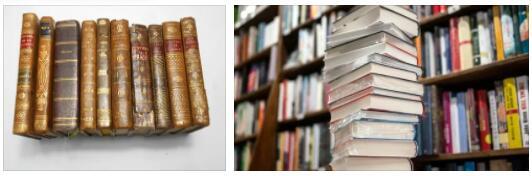 France Literature: 20th Century
